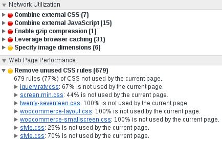 Screenshot Chrome Audits Unused CSS