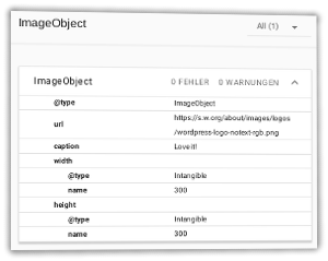 Screenshot ImageObject im Rich Snippets Testing Tool