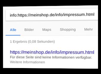 Screenshot Google SERP mit Ergebnis ohne Inhalts-Snippet