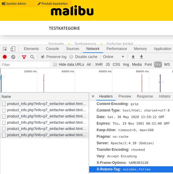 X-Robots-Tag: noindex,follow in Chrome DevTools