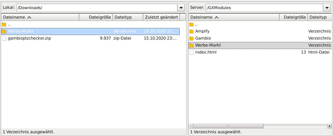 Screenshot FileZIlla: Lokal /Downloads/Werbe-Markt, Server: /GXModules/Werbe-Markt